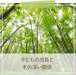 子どもの成長と木の深い関係